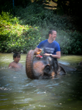 Thailand Elephant Sanctuary